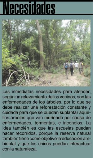 bosques NECESIDADES