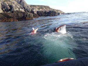 González cumplió con su mayor desafío y unió a nado las Islas Gran Malvinas y Soledad el 13 de marzo.